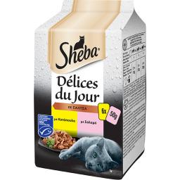 Γατοτροφή Delices du Jour Κοτόπουλο & Σολομός 6x50g
